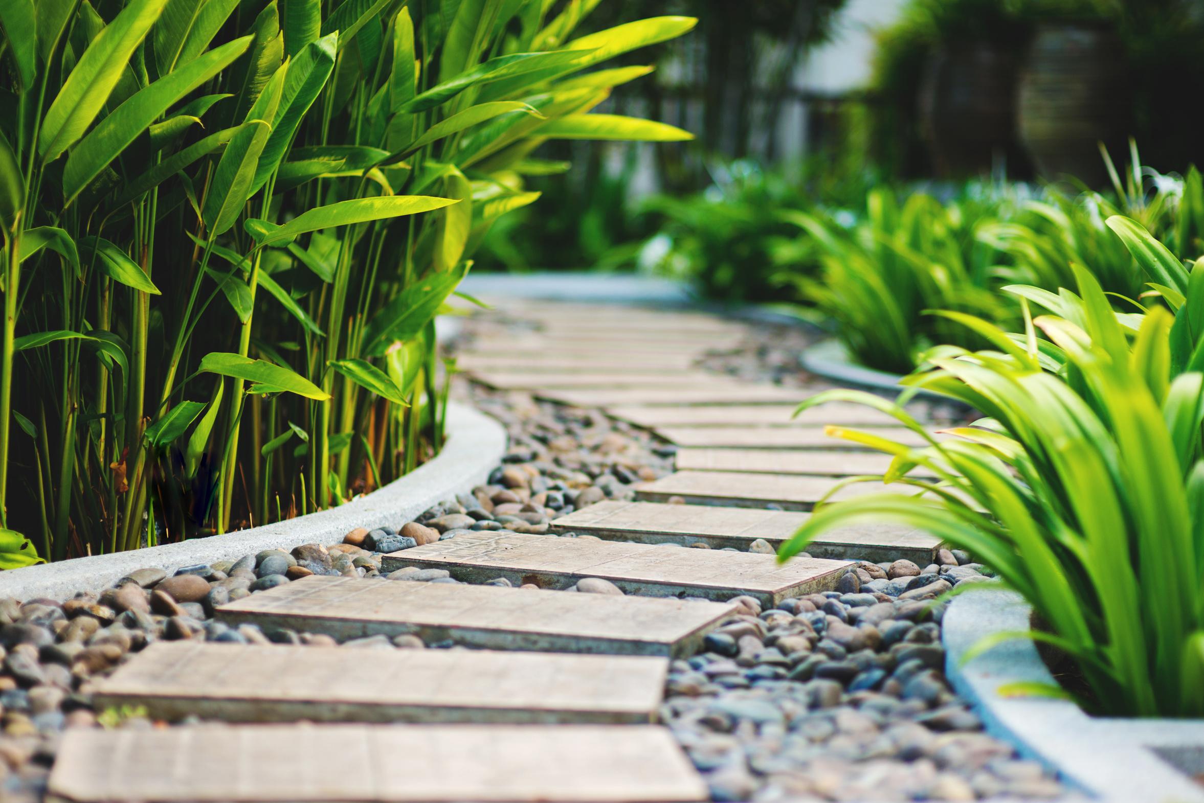 jardin pour une entreprise